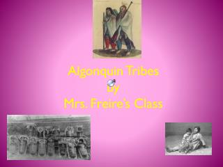 Algonquin  Tribes by Mrs.  Freire's  Class