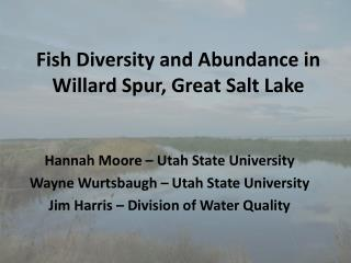 Fish Diversity and Abundance in Willard Spur, Great Salt Lake