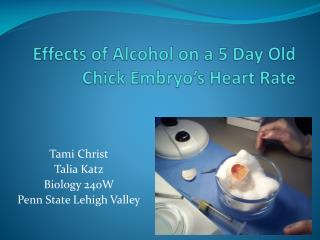 Effects of Alcohol on a 5 Day Old Chick Embryo's Heart Rate