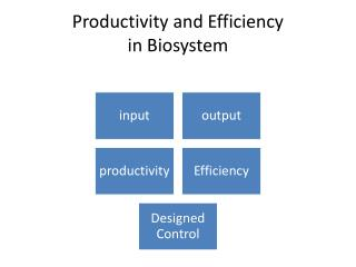Productivity and Efficiency in  Biosystem