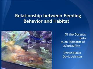 Relationship between Feeding Behavior and Habitat