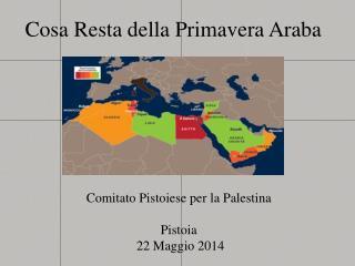 Cosa Resta della Primavera Araba