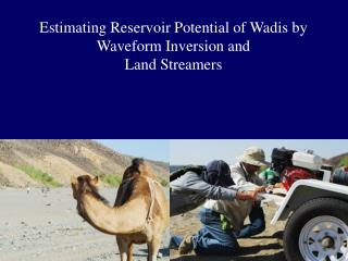 Estimating Reservoir Potential of  Wadis  by Waveform Inversion and  Land Streamers