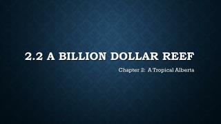 2.2 A Billion Dollar Reef