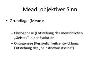 Mead: objektiver Sinn