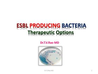 ESBL  PRODUCING  BACTERIA Therapeutic Options
