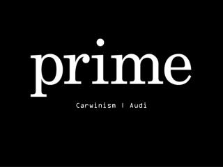 Carwinism |  Audi