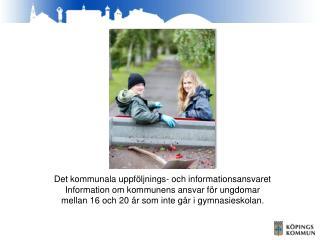Det kommunala uppf�ljnings- och informationsansvaret