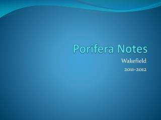 Porifera Notes