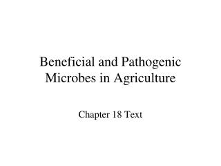 Beneficial and Pathogenic Microbes in Agriculture