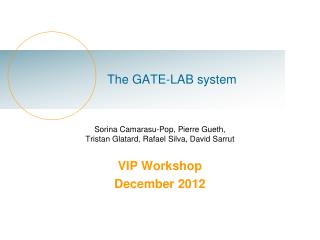 The GATE-LAB system