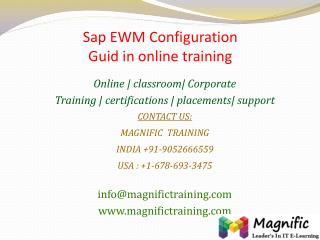 Sap EWM Configuration Guid in online training
