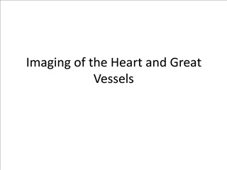 Imaging of the Heart and Great Vessels