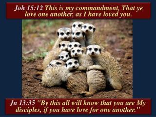 Jn  13:35