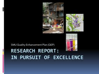 Research Report:  In Pursuit of Excellence