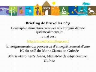 Briefing de Bruxelles n�31