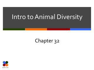 Intro to Animal Diversity