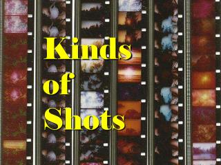 Kinds  of  Shots