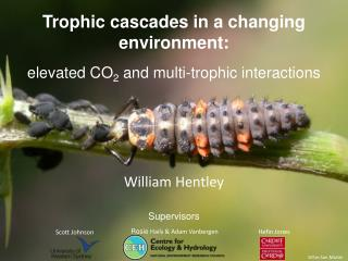 Trophic cascades in a changing environment: elevated CO 2  and multi-trophic interactions