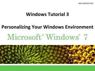 Windows Tutorial 3 Personalizing Your Windows Environment