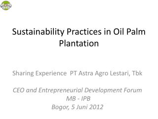 Sustainability Practices in Oil Palm Plantation