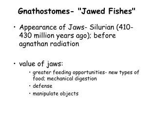 Gnathostomes-