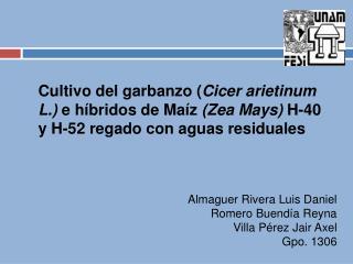 Almaguer Rivera Luis Daniel Romero Buendía Reyna Villa Pérez  Jair  Axel Gpo . 1306