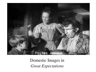Domestic Images in  Great Expectations