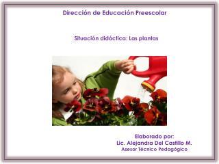 Dirección de Educación Preescolar