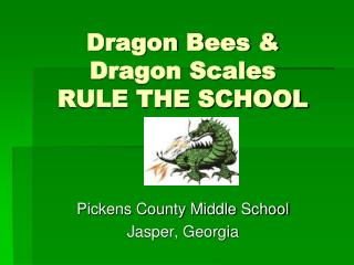 Dragon Bees &  Dragon Scales RULE THE SCHOOL