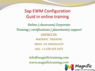 Sap EWM Configuration Guid in online training