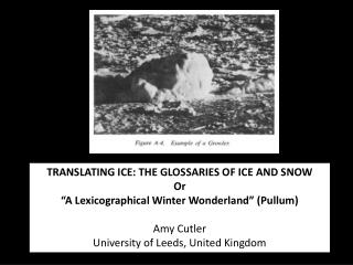 TRANSLATING ICE: THE GLOSSARIES OF ICE AND SNOW Or