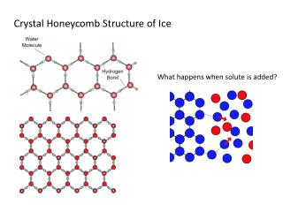 Crystal Honeycomb Structure of Ice