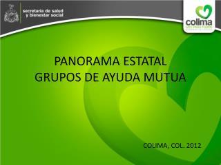 PANORAMA ESTATAL GRUPOS DE AYUDA MUTUA