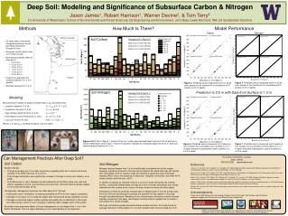 Deep Soil: Modeling and Significance of Subsurface Carbon & Nitrogen