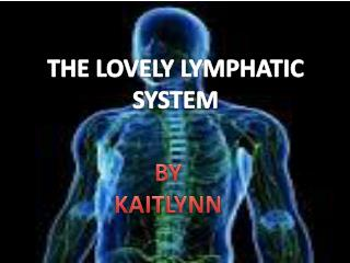 LOVELY  LYMPHATIC             SYSTEM