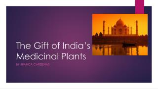 The Gift of India�s Medicinal Plants