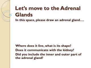 Let's move to the Adrenal Glands