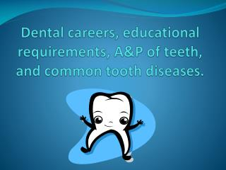 Dental careers, educational requirements, A&P of teeth, and common tooth diseases.