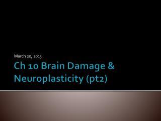Ch 10 Brain Damage &  Neuroplasticity  (pt2)