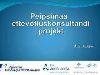 Peipsimaa ettevõtluskonsultandi projekt