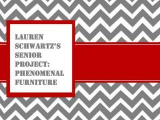 Lauren Schwartz�s Senior Project: Phenomenal Furniture