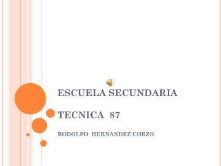 ESCUELA SECUNDARIA TECNICA  87