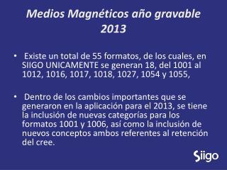 Medios Magnéticos año gravable 2013