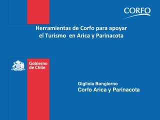 Herramientas de  Corfo  para apoyar  el Turismo  en Arica y  Parinacota