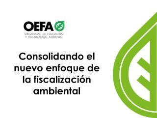 Consolidando el nuevo enfoque de la fiscalizaci�n ambiental