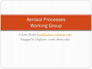 Aerosol Processes  Working Group