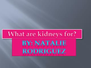 What are kidneys for?
