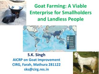 Goat Farming: A Viable Enterprise for Smallholders and Landless People