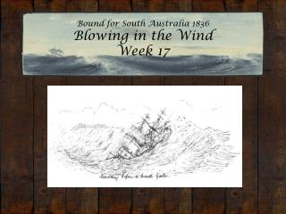 Bound for South Australia 1836 Blowing in the Wind  Week 17